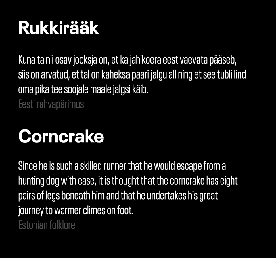 Rukkiraak_tekst