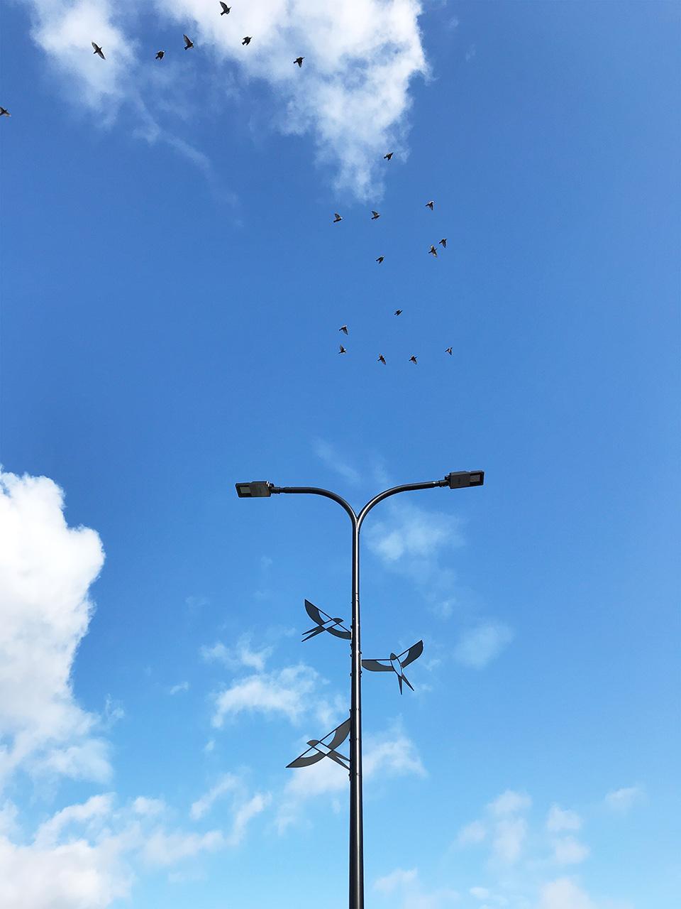 Pääsukesed. Installatsioon Tallinna Lennujaamas